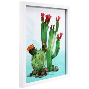 green cactus framed